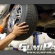 GumiPark - Lurdy Ház