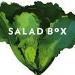 Salad Box - Lurdy Ház