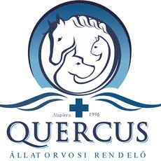 Quercus Állatorvosi Rendelő - dr. Tölgyesi Zoltán állatorvos