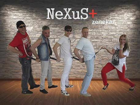 A NeXuS együttes