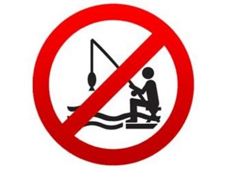 Tilos lesz belógatni a botot